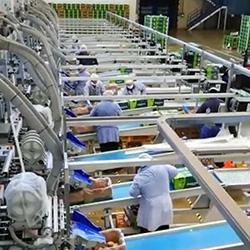 Agrintesa, Alegra, Brio e Valfrutta Fresco donano 150.000 euro alla Protezione Civile