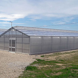 Inaugurata la nuova serra screen house del CAV di Tebano